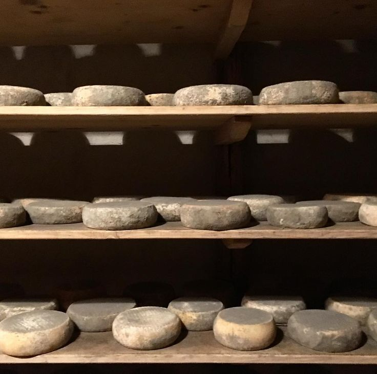 Some cheese  #formagelle #forme #cheese #stagionatura #montagna #estate #estate2017