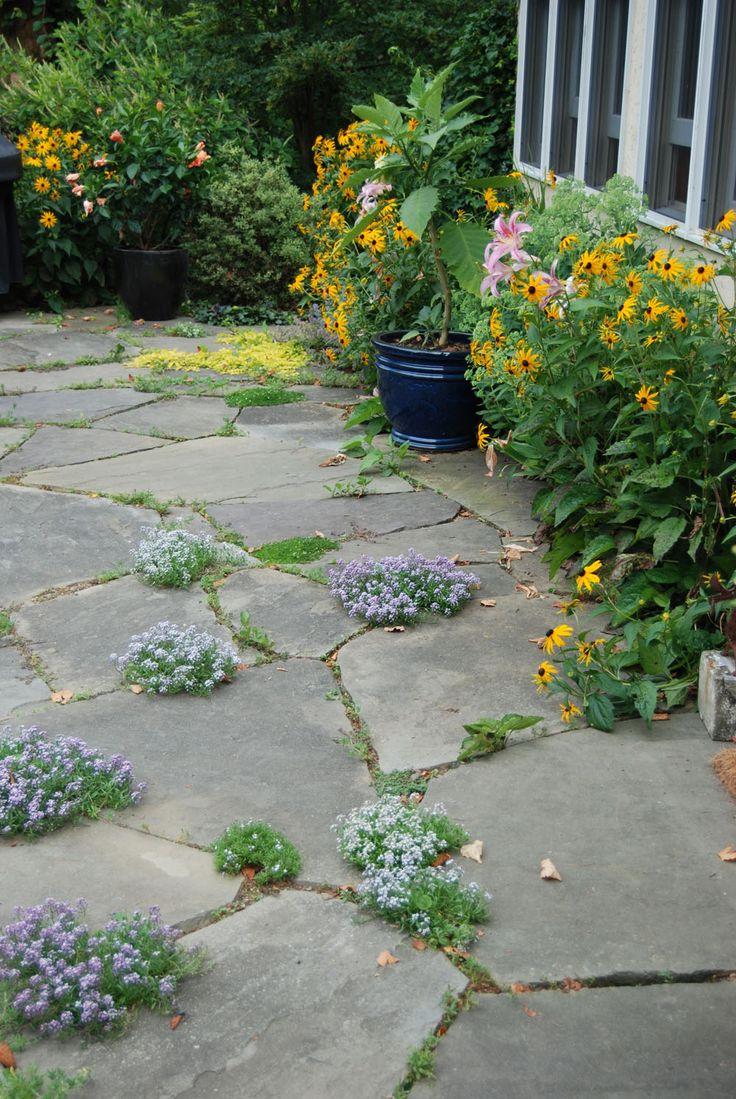 Backyard patio ideas flagstone - Flagstone Patio Google Search More