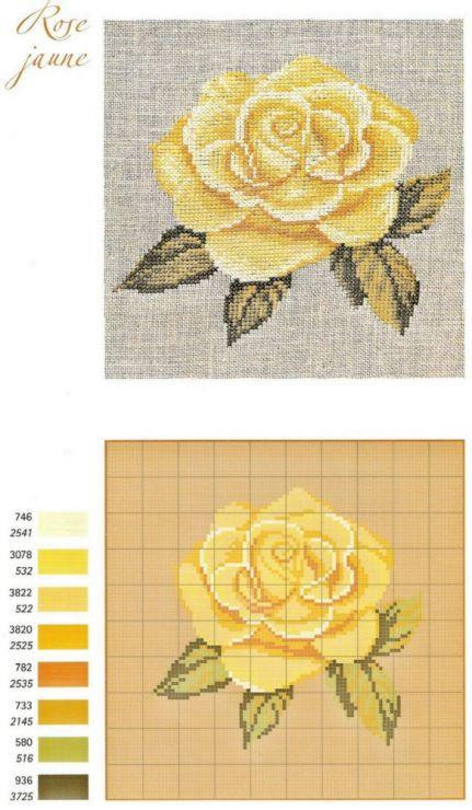 Gallery.ru / Фото #15 - Les Roses de Monique Bonnin - Mongia
