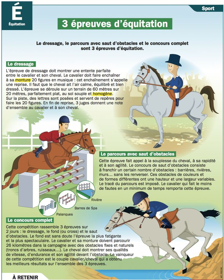 Fiche exposés : 3 épreuves d'équitation