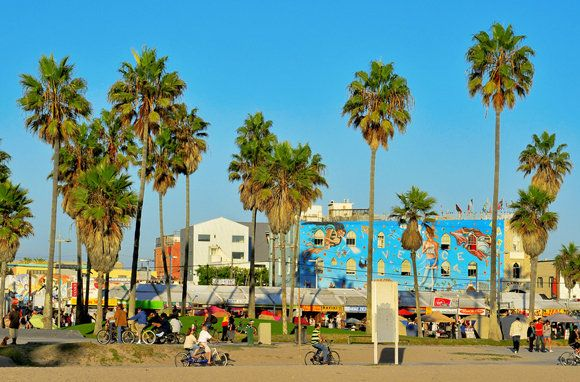 Venice Beach's colorful boardwalk lined with palm trees and shops. (Photo: nito/Shutterstock)