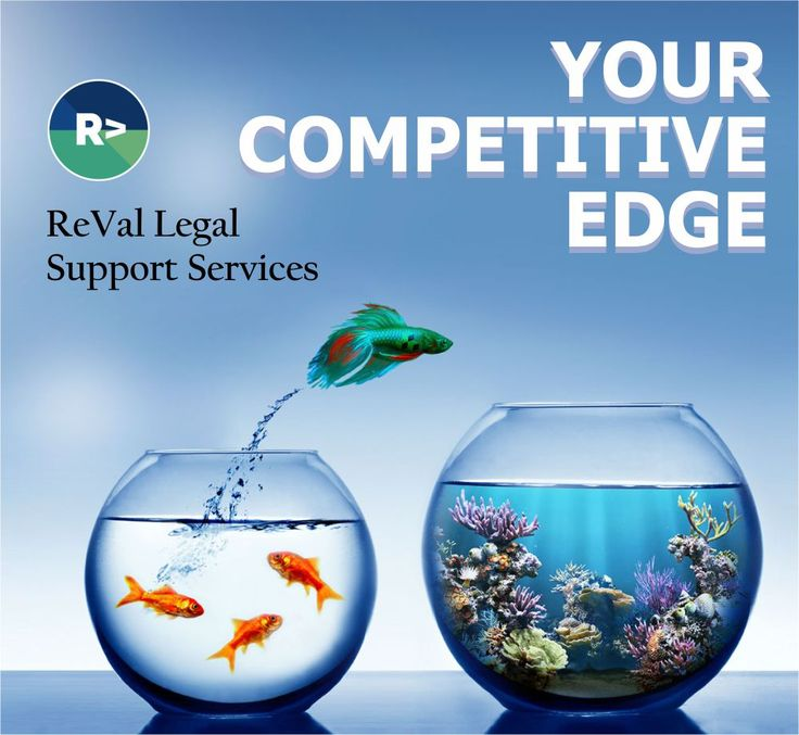 Have an edge over your competitors. Choose ReVal Legal Support Services.