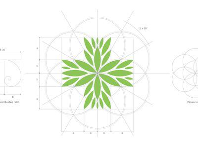 Sacred-geometry-logo-design #logo #design #inspiration