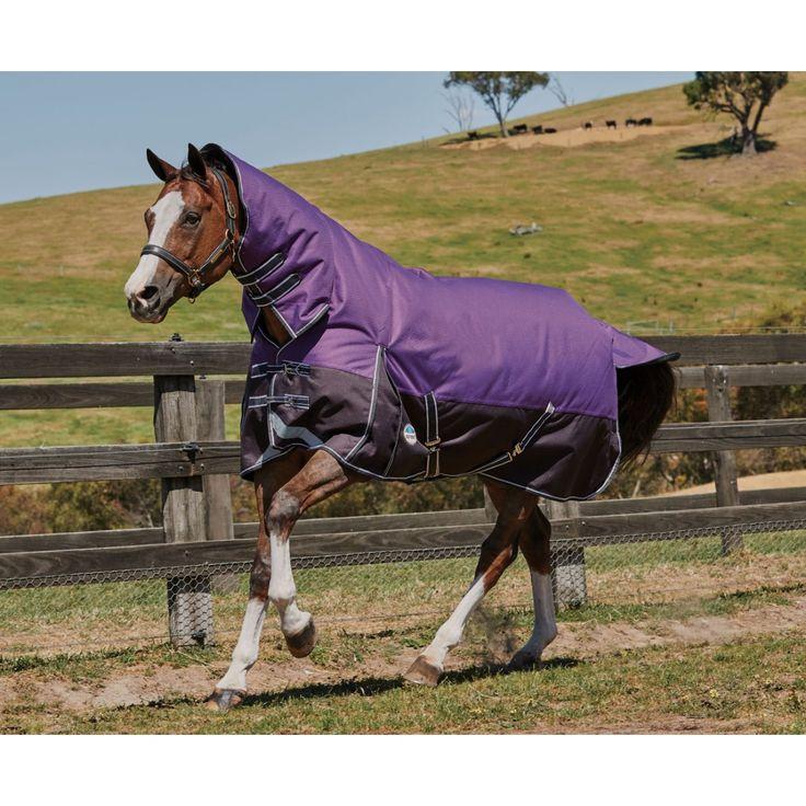 WEATHERBEETA COMFITEC PLUS DYNAMIC COMBO NECK MEDIUM/LITE PURPLE/BLACK , Horse Rugs , For Horses