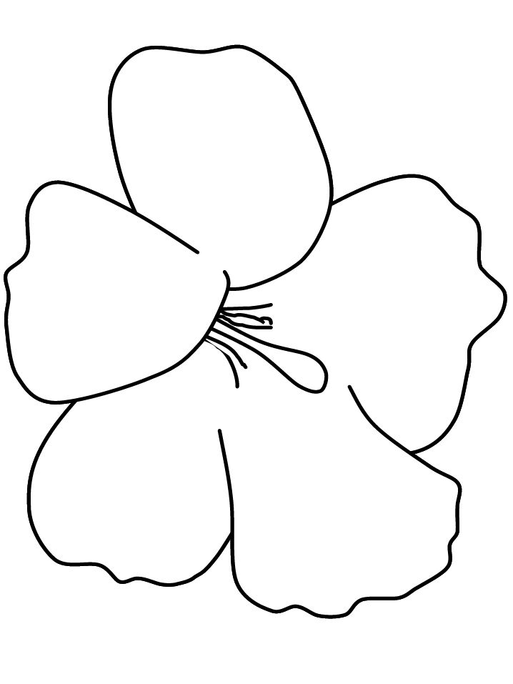 find this pin and more on hibiscus free coloring pages