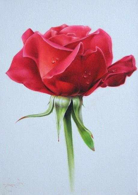 anastgal   Розы художника Василия Лучкива (42 репродукции)