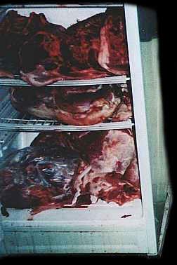 Serial Killer Jeffrey Dahmer Crime Scene Photo.: Crime Scenes Photos