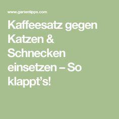 Kaffeesatz gegen Katzen & Schnecken einsetzen – So klappt's!
