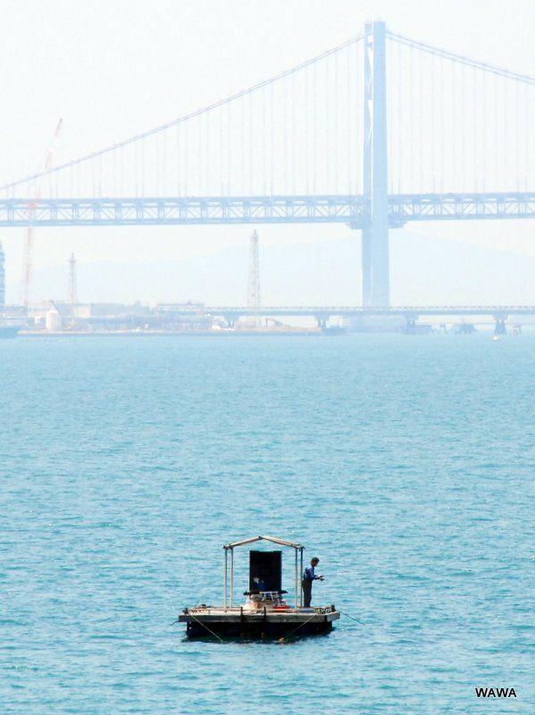 Raftfishing, Sakaide-port, Kagawa (瀬戸大橋が見える坂出港の筏釣り)