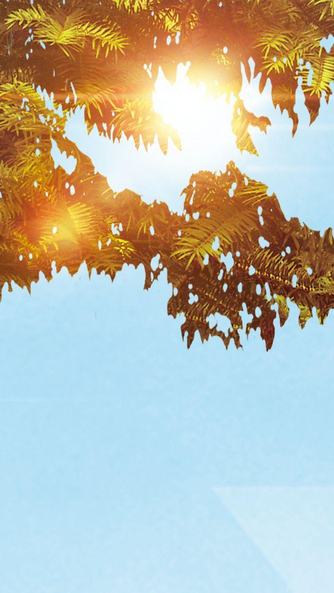 إطار الدائرة مع تصميم زهرة الذهب حفل زواج دعوة زفاف ذهب Png وملف Psd للتحميل مجانا In 2021 Flower Frame Clip Art Frames Borders Watercolor Flowers Pattern