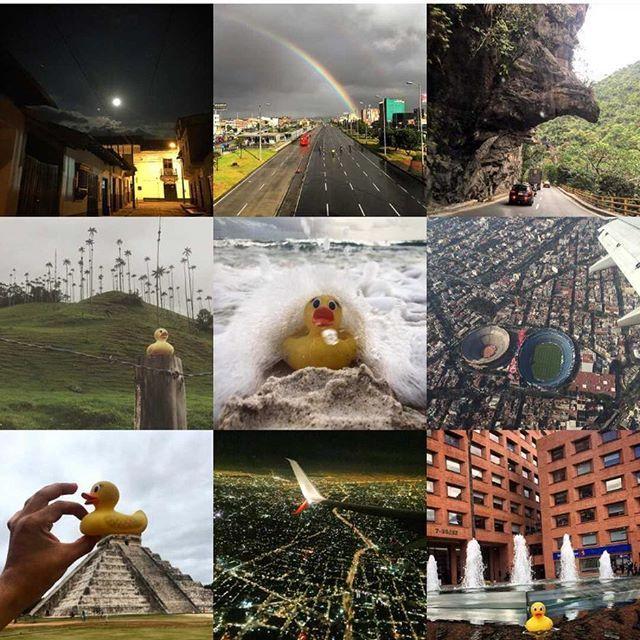 Mis #2016bestnine en Instagram. #ElPatoDeTriego presente!