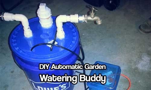 Automatic Garden Watering. With this DIY automatic garden watering buddy you will never forget to water your plants and veggies ever again!