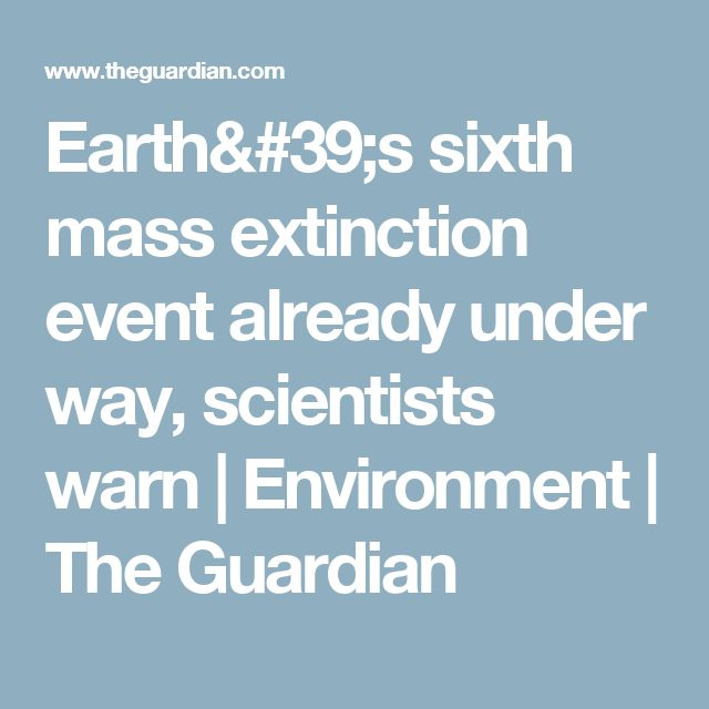 Earth's sixth mass extinction event already under way, scientists warn | Environment | The Guardian