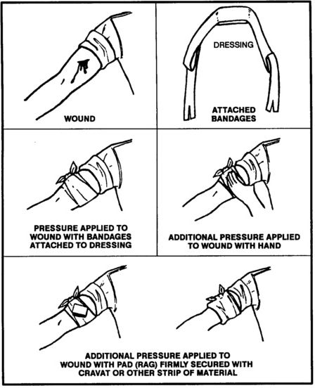 white mamba first aid manual