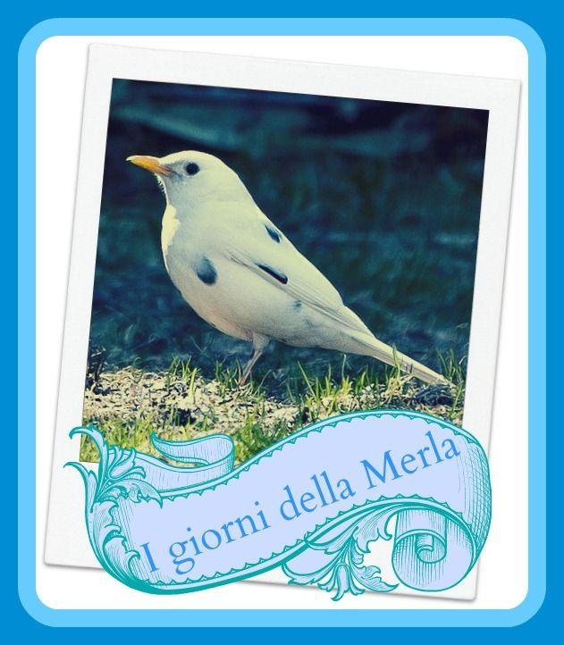 TuttoPerTutti: I 3 GIORNI DELLA MERLA - Origini, credenze, tradizioni Secondo le credenze popolari se i giorni della merla sono freddi, la primavera sarà bella; se sono caldi, la primavera arriverà in ritardo. http://tucc-per-tucc.blogspot.it/2014/01/news-curiosita-i-3-giorni-della-merla.html