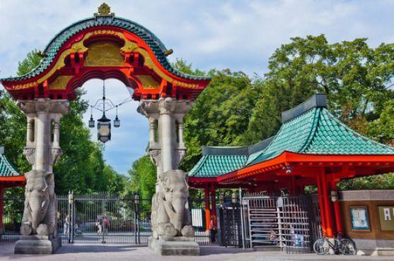 Berlin Zoo http://www.clubglobals.com/ #Berlin #expats #home