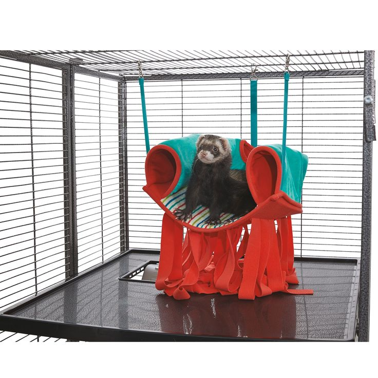 All Living Things Hanging Hammock With Fabric Small Pet Hide