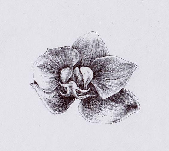 Картинки по запросу тату орхидеи