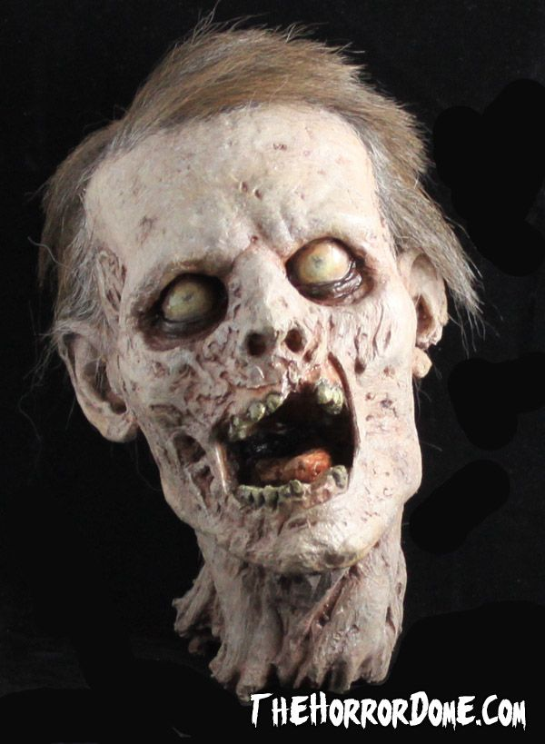 THE ULTIMATE MOVIE QUALITY MALE ZOMBIE HEAD~need this for the fish aquarium!!!