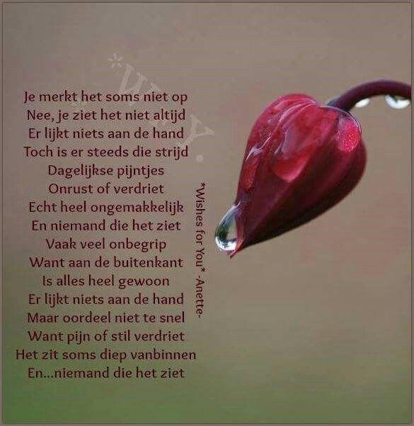 Citaten Love Poem : Best images about citaten on pinterest texts tes and