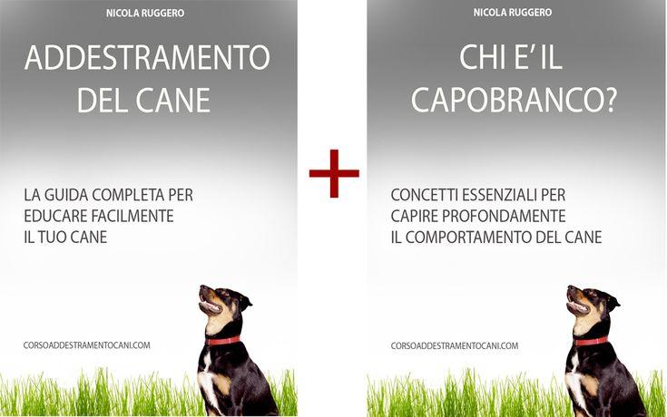 Il corso online fatto del Manuale da 240 pagine più lo special Report per educare il tuo cane da casa, in modo facile e divertente.