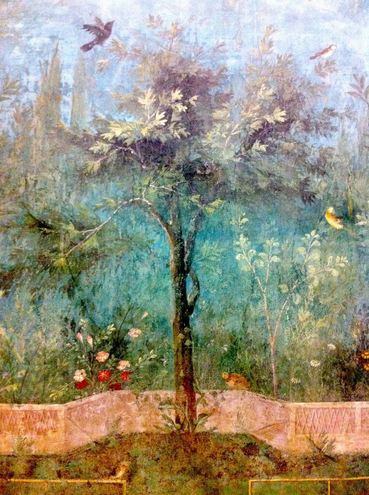 Excavated Roman Frescoes Housed at the Palazzo Massimo