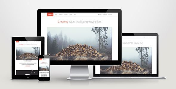 Download Develop-Responsive HTML5/CSS3 WordPress Theme