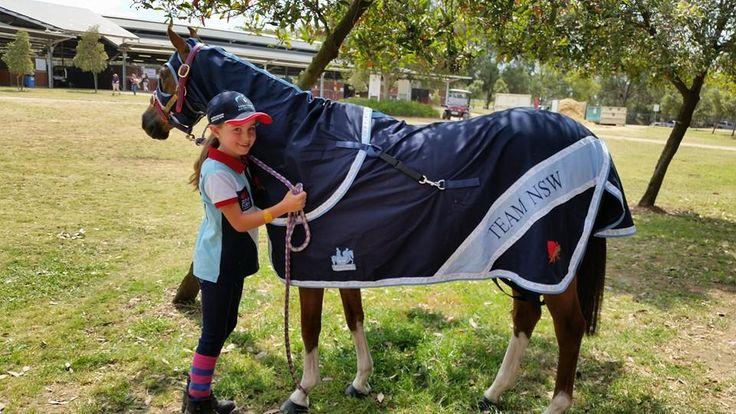 NSW TEAM  horse RUG