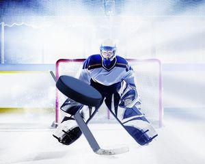 Ice hockey goalie Wall Mural