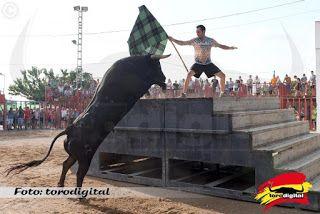 torodigital: Segunda jornada del XVIII Concurso de ganaderías ...