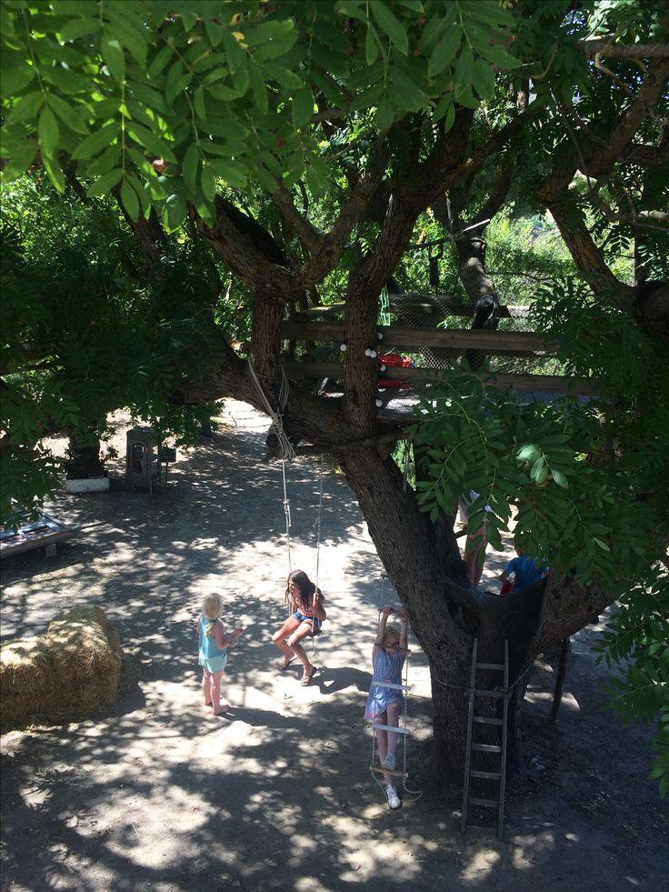 Beautiful day at Bordone biofarm