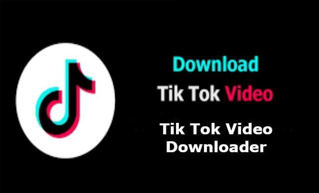 Tik Tok Video Downloader Tok Tik Tok Video