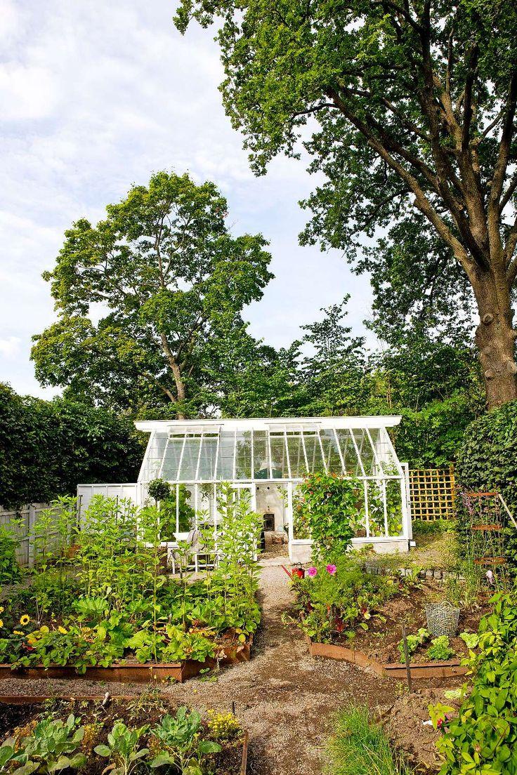Växthuset utgör en vacker fond åt grönsakslandet, som är anlagt som en klosterträdgård med fyra gångar som möts i mitten. Här frodas bland annat blomsterböna, mangold, sallad, brysselkål, jordärtskockor, sparris, jordgubbar och rabarber.