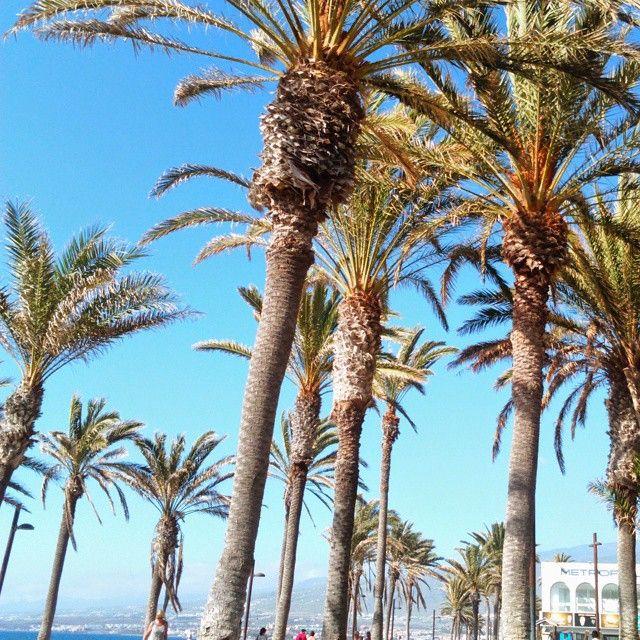 Las Americas, Tenerife - silvia m (@sivvia) • Foto e video di Instagram
