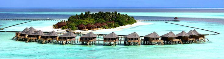Google Image Result for http://www.maldivesvacation.net/wp-content/uploads/2010/11/Maldives-Island1.jpg