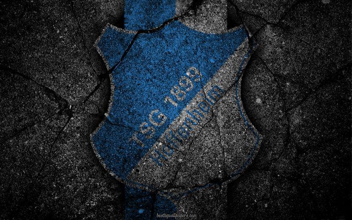 Herunterladen hintergrundbild hoffenheim, logo, art, bundesliga, soccer, football club, tsg 1899 hoffenheim, asphalt texture