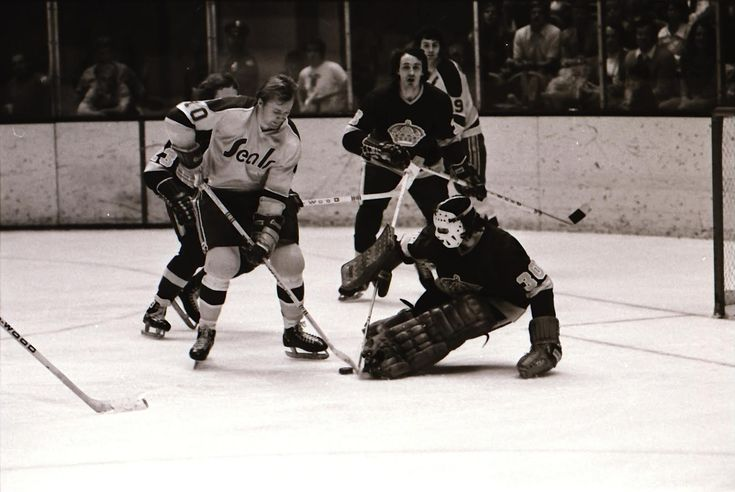 """Review of """"The California Golden Seals Story"""" Film"""