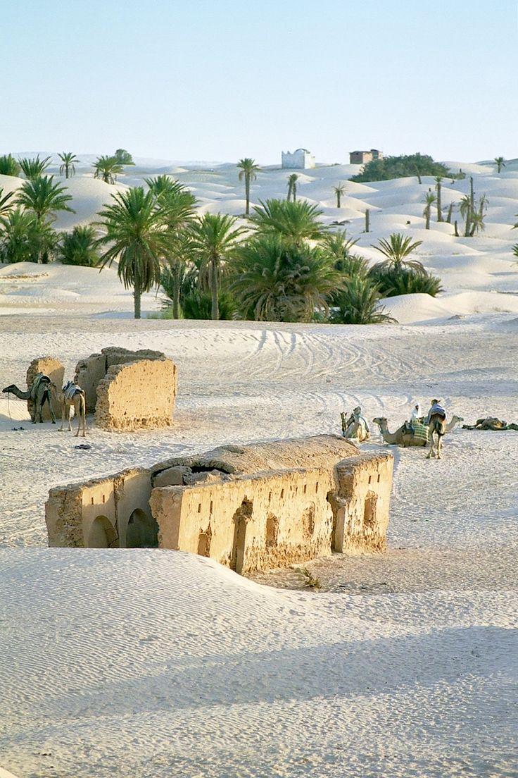 Douz - Tunisia By Alain Bachellier