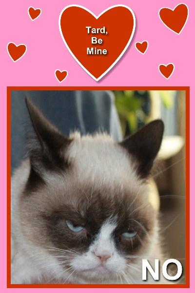 grumpy cat says no to valentine - Grumpy Cat Valentine