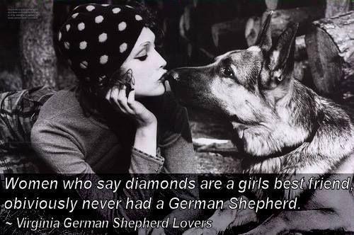 German Shepherd best friend
