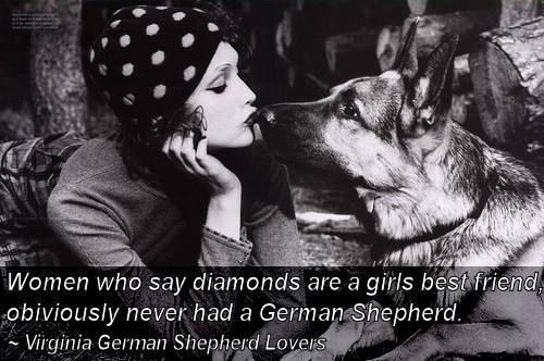 German Shepherd best friend