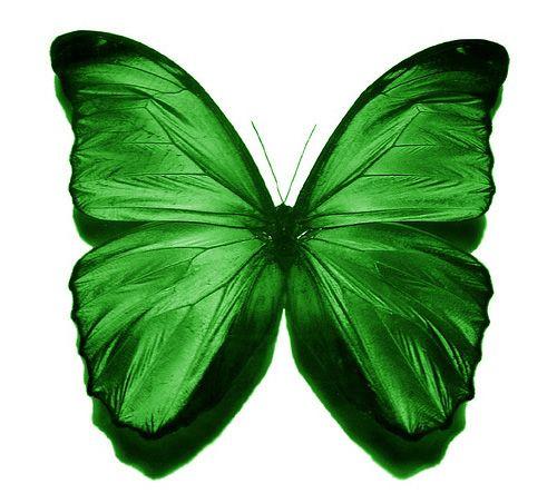Green:: Verde - #Green