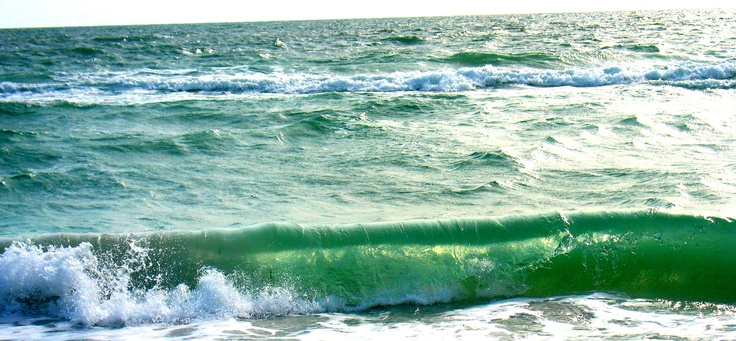 Treasure Island, Florida: Beaches, Favorite Places, Florida Fanatic, Treasure Island Florida, Camera Eye, The Beach