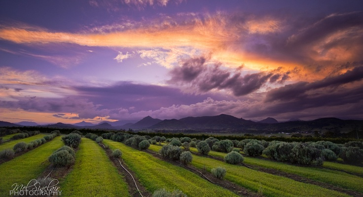 Taken on a beautiful stormy afternoon in Queenslands' Scenic Rim