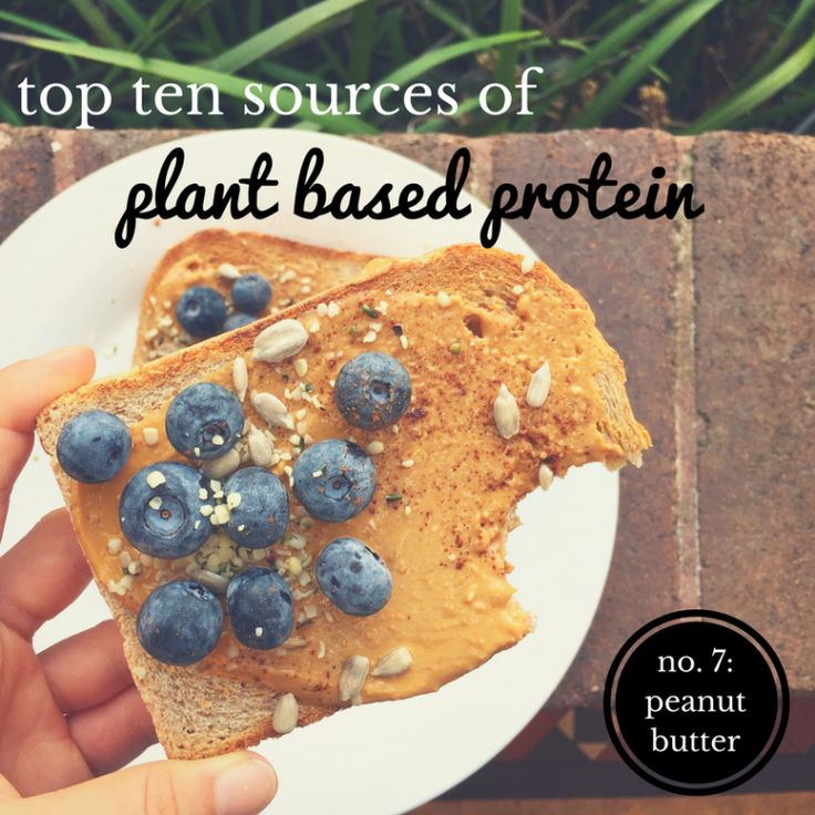 top ten plant based proteins