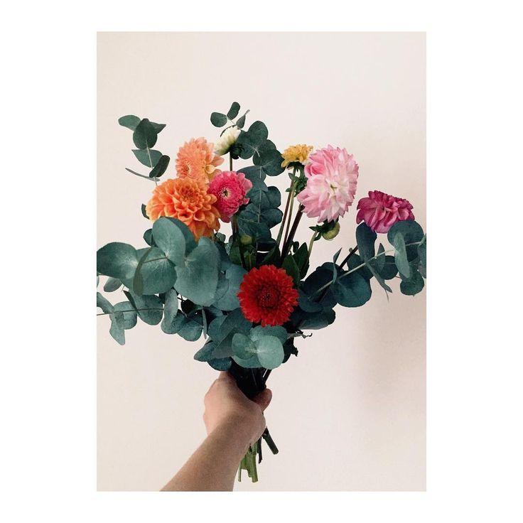 #happysunday #flowers #minimal #minimalism #photography #isabelpettinato