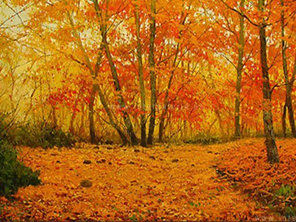 Desde www.dstudio.es os deseamos que paséis un feliz otoño!  En nuestro blog puedes encontrar este completo post sobre los paisajes de otoño con interesantes rutas para disfrutar la estación.  http://dstudio.es/blog/paisajes-de-otono-rutas-para-disfrutar-la-estacion