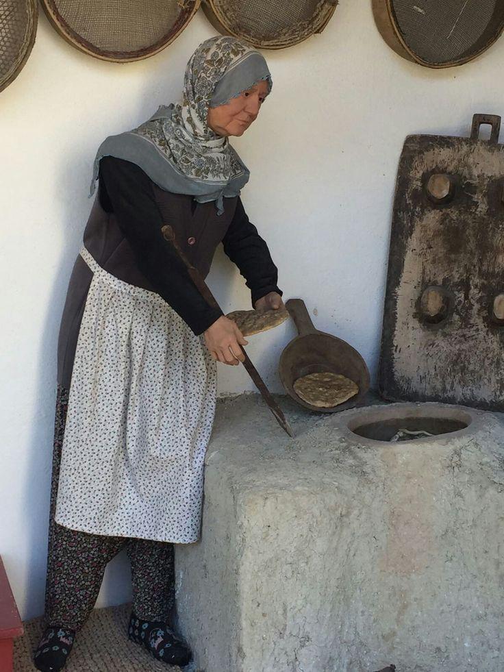 Turkey Malatya (melitta)