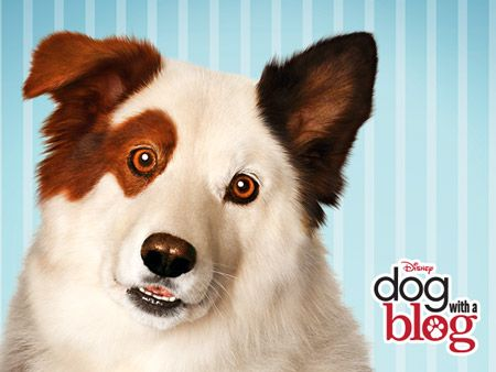 Dog with a Blog | Disney Wiki | Fandom