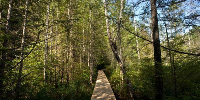 Hiking the Sunshine Coast, British Columbia, Canada